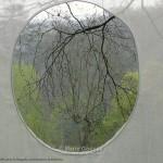 Fenêtres Clères (1)